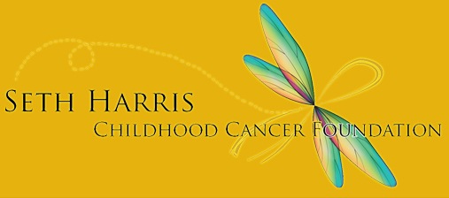 Seth Harris Childhood Cancer Foundation